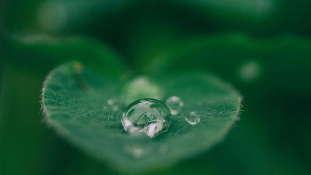 水のダイエット効果について