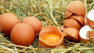 卵1個のカロリーより気にすること