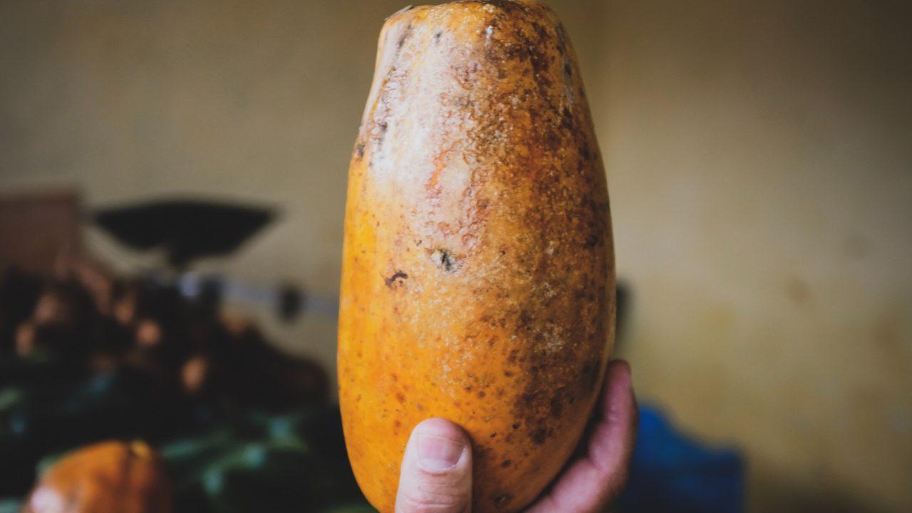 根菜類は太る