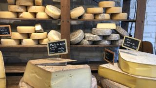 チーズの栄養
