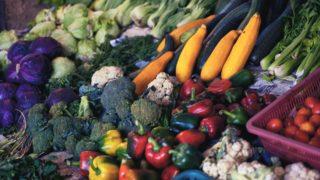 ベジタリアンはダイエットに有効か